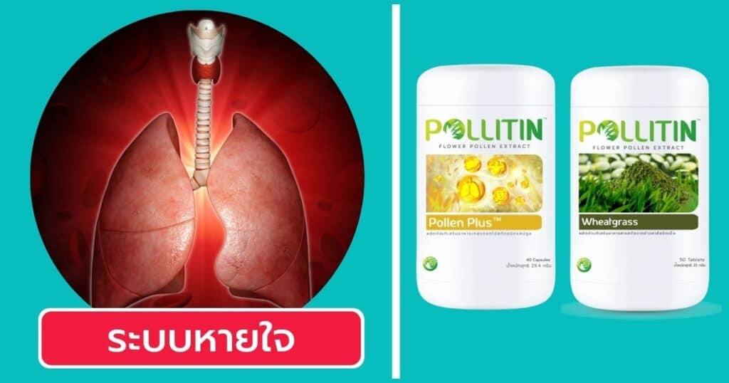 วิธีเลือกพอลลิติน ระบบหายใจ
